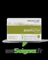 Granions De Bismuth 2 Mg/2 Ml S Buv 10amp/2ml à Sarrebourg