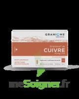 Granions De Cuivre 0,3 Mg/2 Ml S Buv 30amp/2ml à Sarrebourg