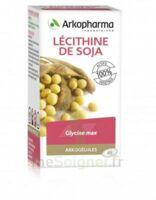 Arkogélules Lécithine de soja Caps Fl/45 à Sarrebourg