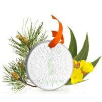 Puressentiel Diffusion Diffuseur Céramique galet médaillon pour Huiles Essentielles