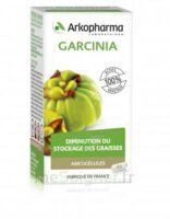Arkogélules Garcinia Gélules Fl/45 à Sarrebourg