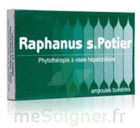 RAPHANUS S.POTIER BIOLOGIQUE, bt 12 à Sarrebourg