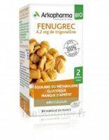 Arkogélules Fenugrec Bio Gélules Fl/40 à Sarrebourg