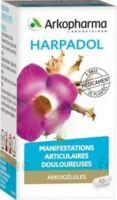 ARKOGELULES HARPAGOPHYTON Gélules Fl/150 à Sarrebourg