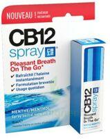 Cb 12 Spray Haleine Fraîche 15ml à Sarrebourg