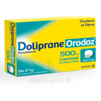 Dolipraneorodoz 500 Mg, Comprimé Orodispersible à Sarrebourg