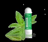 Puressentiel Respiratoire Inhaleur Respiratoire aux 19 Huiles Essentielles - 1 ml à Sarrebourg
