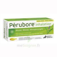 Perubore Caps Inhalation Par Vapeur Inhalation Plq/15 à Sarrebourg