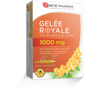 Forte Pharma Gelée royale 1000 mg Solution buvable 20 Ampoules/10ml à Sarrebourg