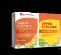 Forte Pharma Gelée royale 1000 mg Solution buvable 2*B/20 Ampoules/10ml à Sarrebourg