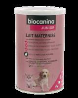 Biocanina Lait poudre maternisé B/400g à Sarrebourg