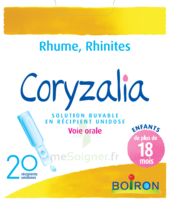 Boiron Coryzalia Solution Buvable Unidose B/20 à Sarrebourg