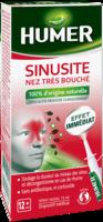 Humer Sinusite Solution Nasale Spray/15ml à Sarrebourg