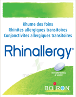 Boiron Rhinallergy Comprimés B/40 à Sarrebourg