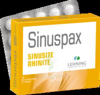 Lehning Sinuspax Comprimés à Croquer 3plq/20 à Sarrebourg
