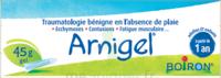 Boiron Arnigel Gel T/45g à Sarrebourg